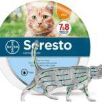 Comparatif des 10 meilleurs anti-puces pour chat en 2021
